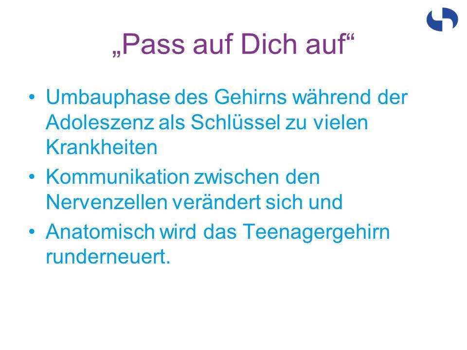 """""""Pass auf Dich auf Umbauphase des Gehirns während der Adoleszenz als Schlüssel zu vielen Krankheiten."""
