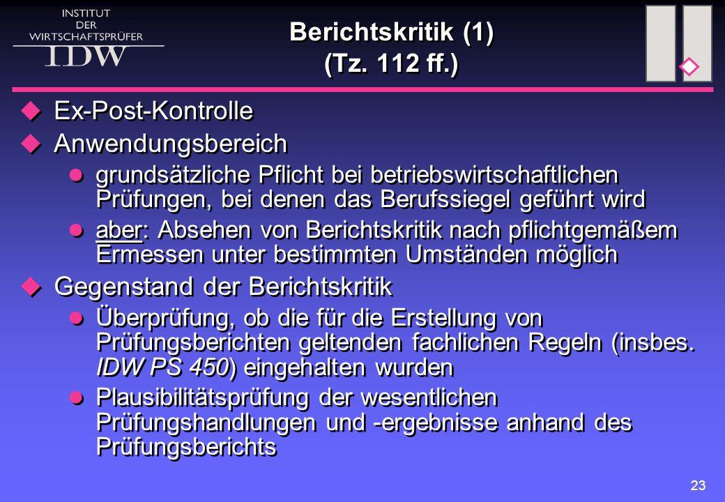Berichtskritik (1) (Tz. 112 ff.)