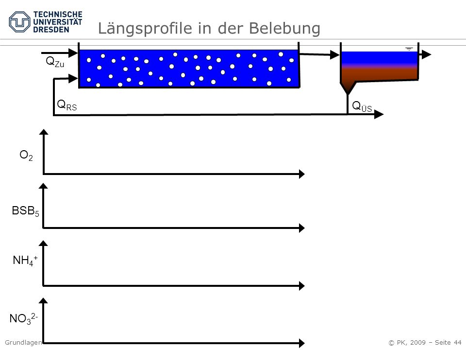 Längsprofile in der Belebung