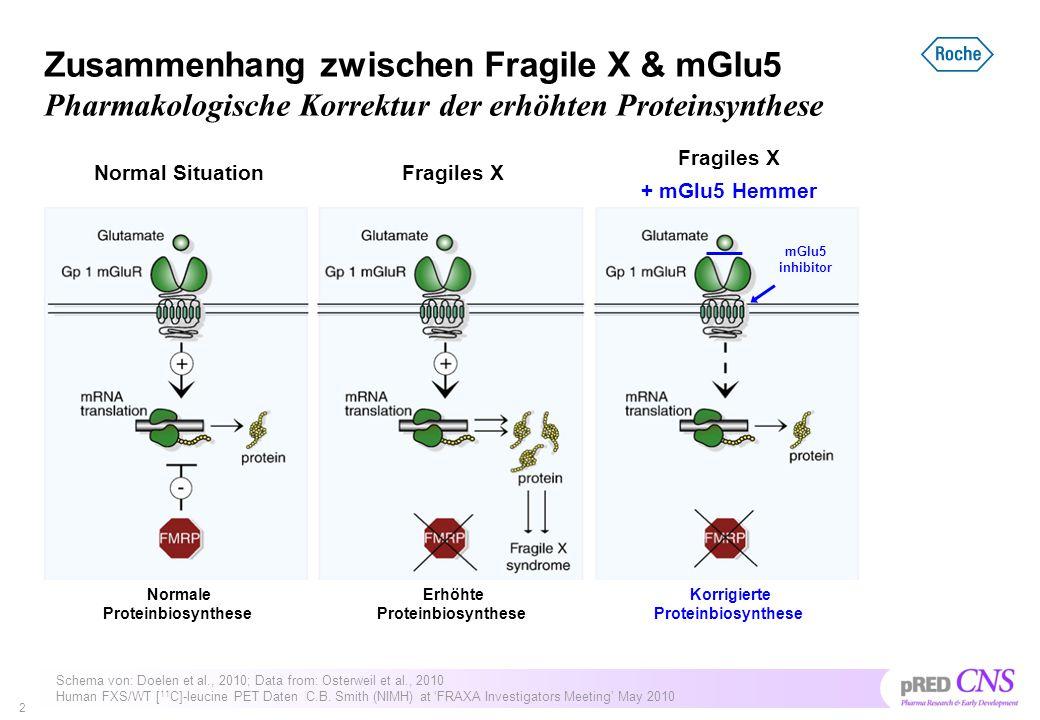 Zusammenhang zwischen Fragile X & mGlu5 Pharmakologische Korrektur der erhöhten Proteinsynthese