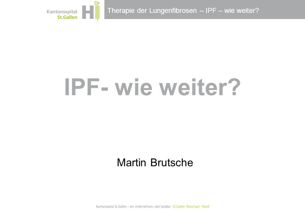 Thema / Bereich / Anlass Martin Brutsche