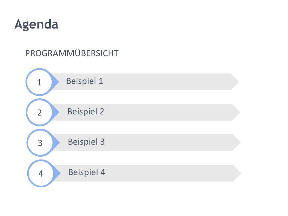 Agenda PROGRAMMÜBERSICHT 1 Beispiel 1 2 Beispiel 2 3 Beispiel 3 4