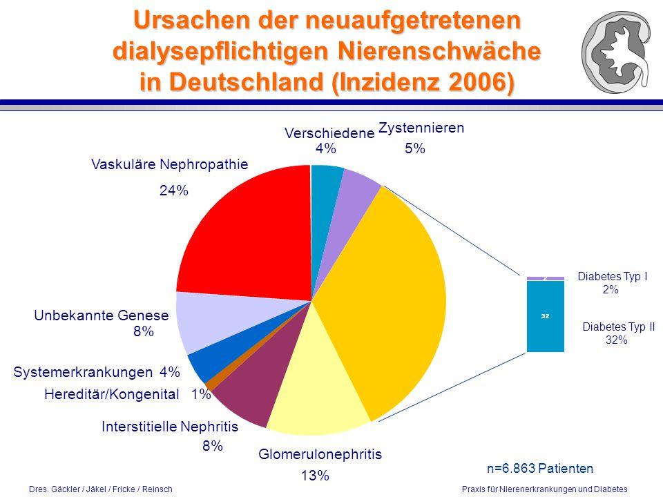 Ursachen der neuaufgetretenen dialysepflichtigen Nierenschwäche in Deutschland (Inzidenz 2006)