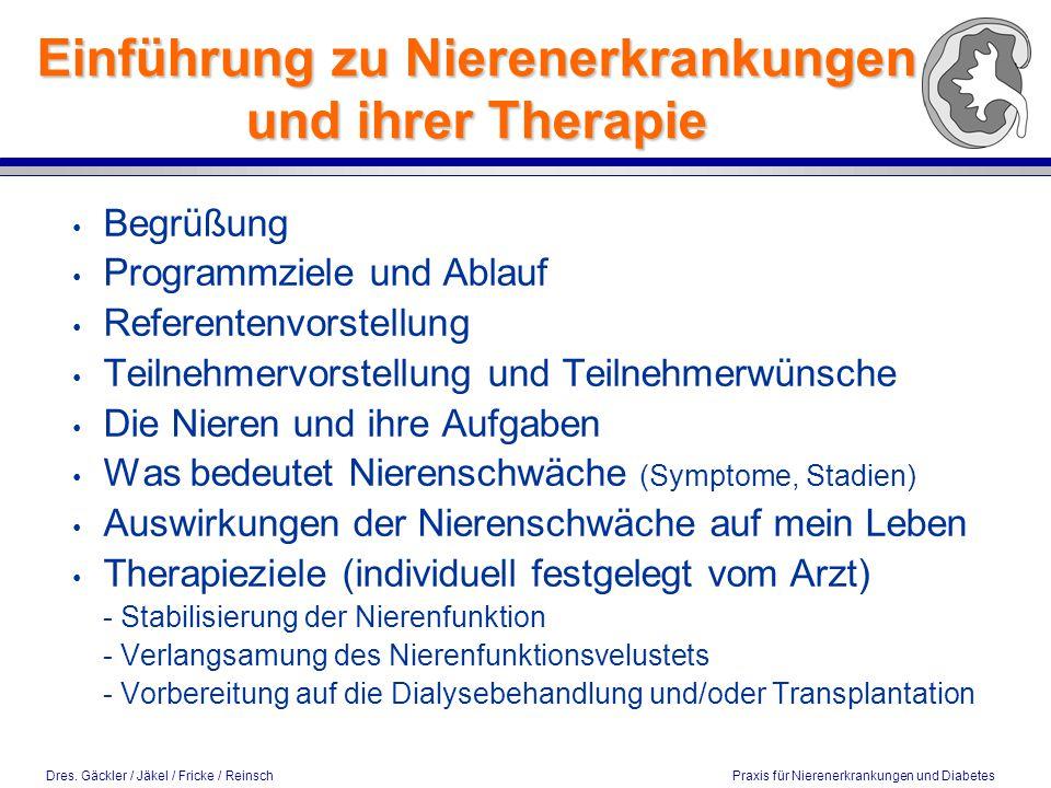 Einführung zu Nierenerkrankungen und ihrer Therapie