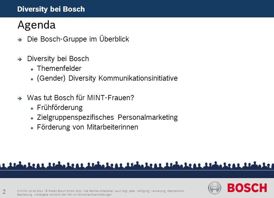 Agenda Diversity bei Bosch Die Bosch-Gruppe im Überblick