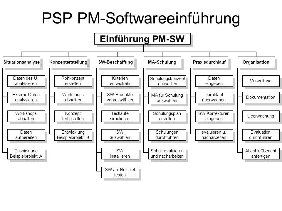 PSP PM-Softwareeinführung