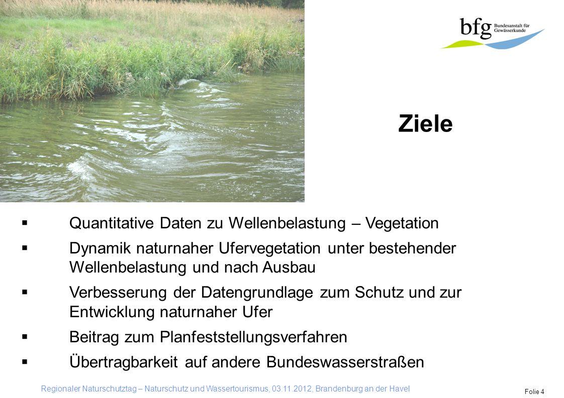 Ziele Quantitative Daten zu Wellenbelastung – Vegetation