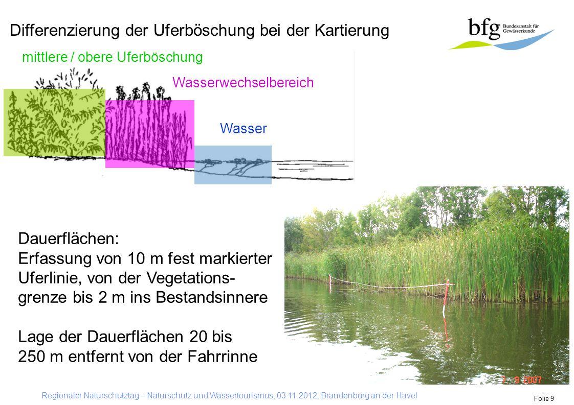 Differenzierung der Uferböschung bei der Kartierung