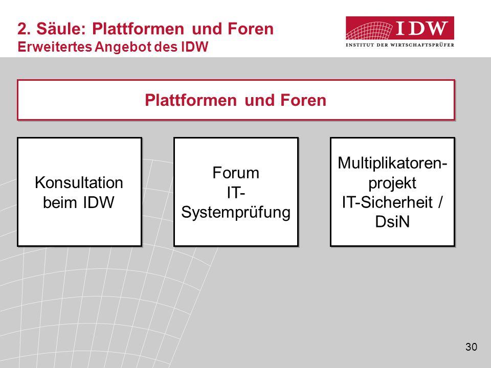2. Säule: Plattformen und Foren Erweitertes Angebot des IDW