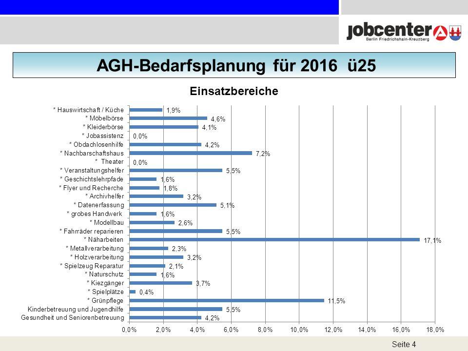 AGH-Bedarfsplanung für 2016 ü25