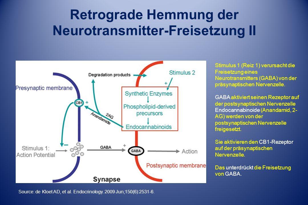 Retrograde Hemmung der Neurotransmitter-Freisetzung II