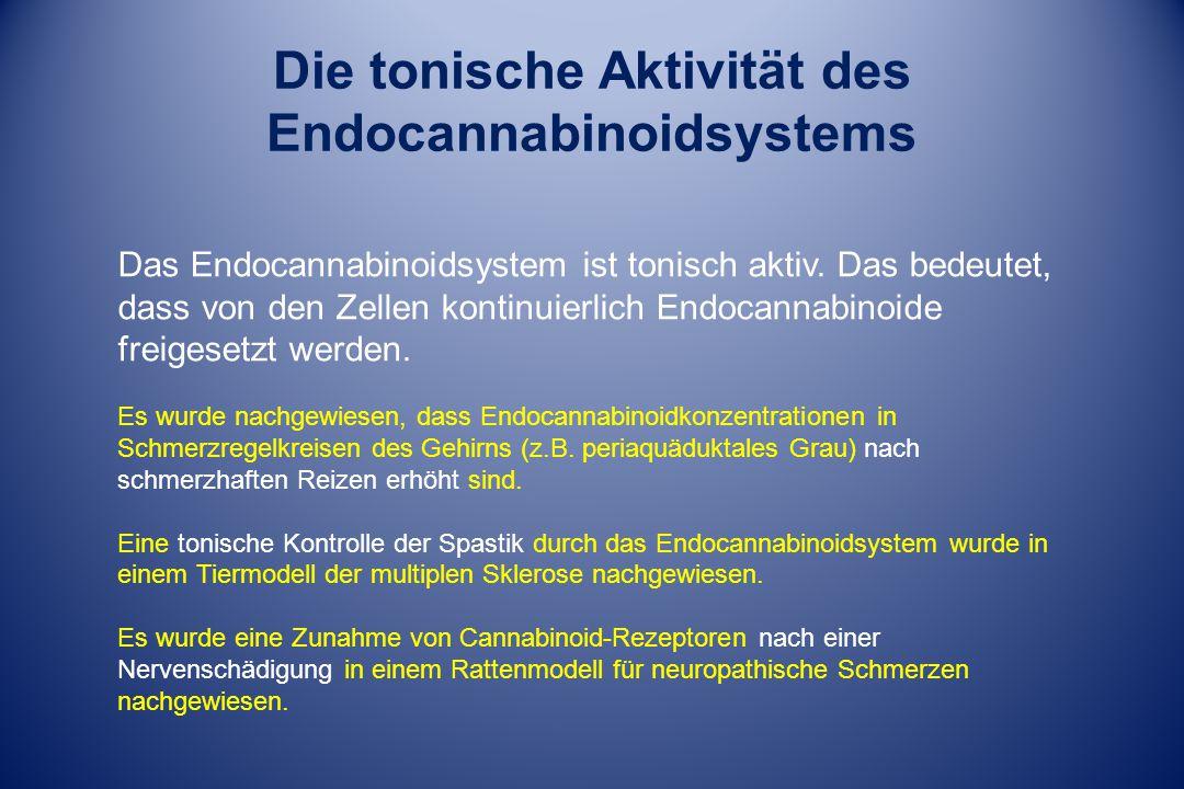 Die tonische Aktivität des Endocannabinoidsystems