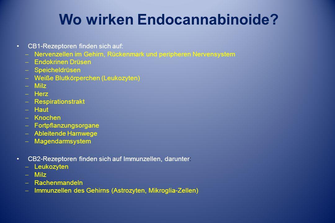 Wo wirken Endocannabinoide