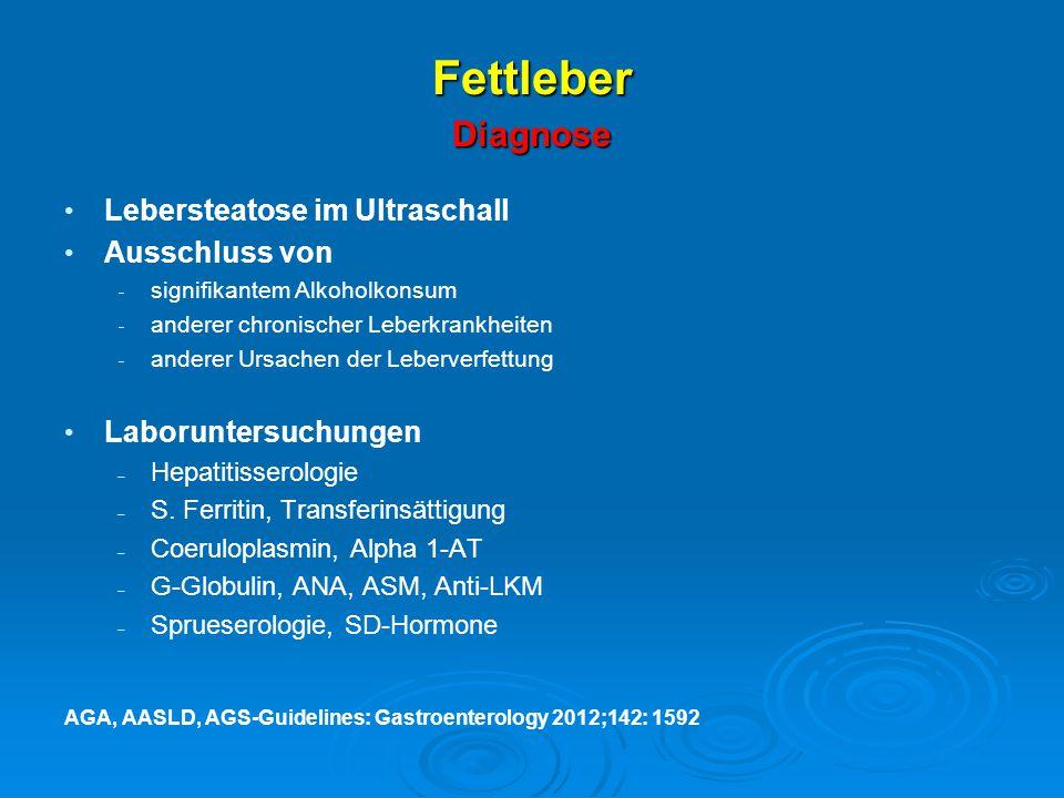 Fettleber Diagnose Lebersteatose im Ultraschall Ausschluss von
