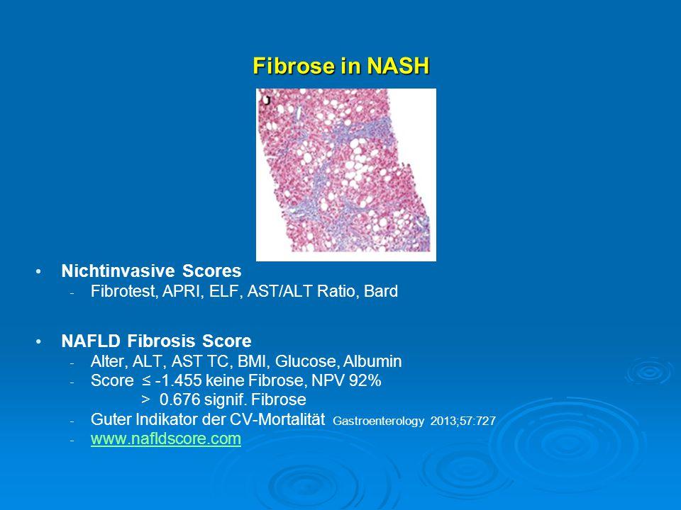 Fibrose in NASH Nichtinvasive Scores NAFLD Fibrosis Score