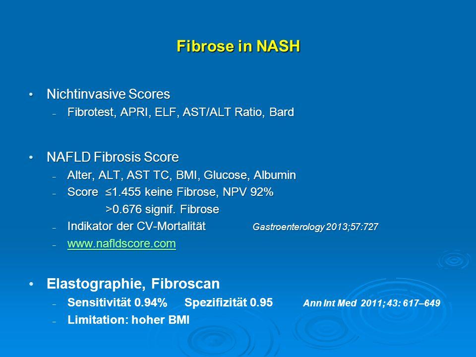 Fibrose in NASH Elastographie, Fibroscan Nichtinvasive Scores