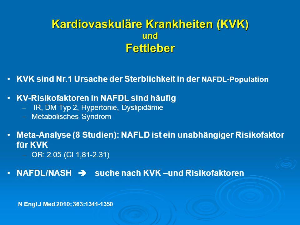Kardiovaskuläre Krankheiten (KVK) und Fettleber