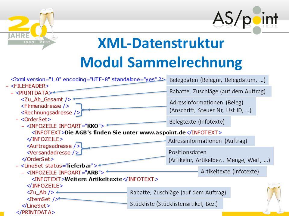 XML-Datenstruktur Modul Sammelrechnung
