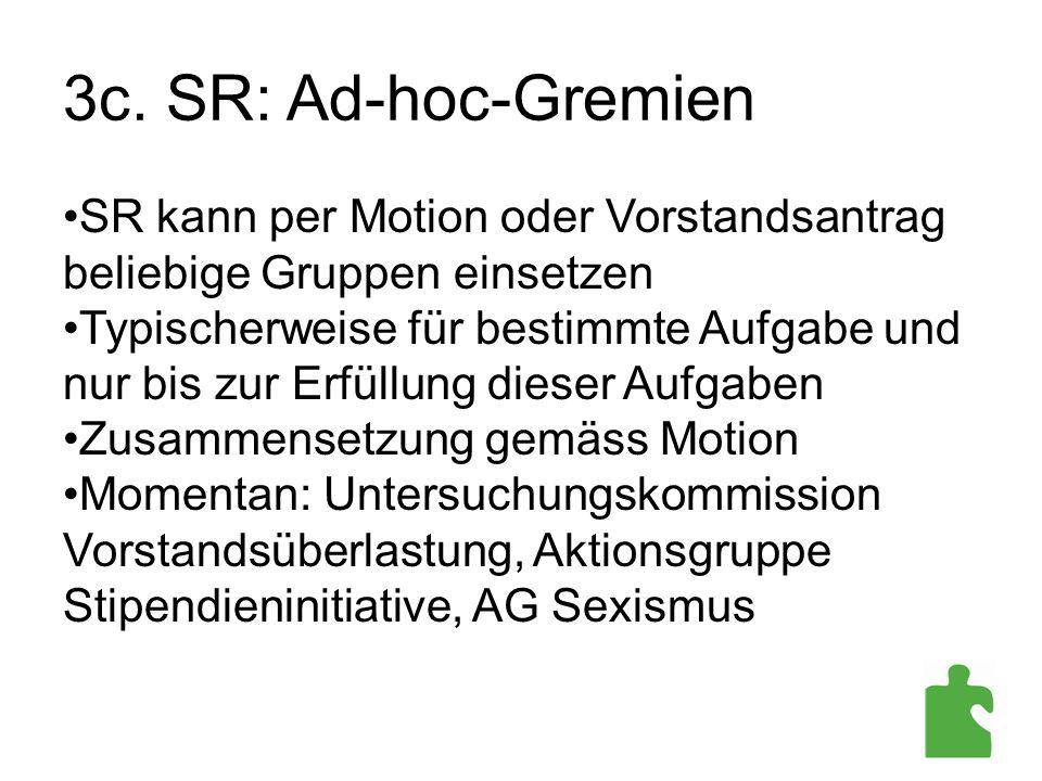 3c. SR: Ad-hoc-Gremien SR kann per Motion oder Vorstandsantrag beliebige Gruppen einsetzen.