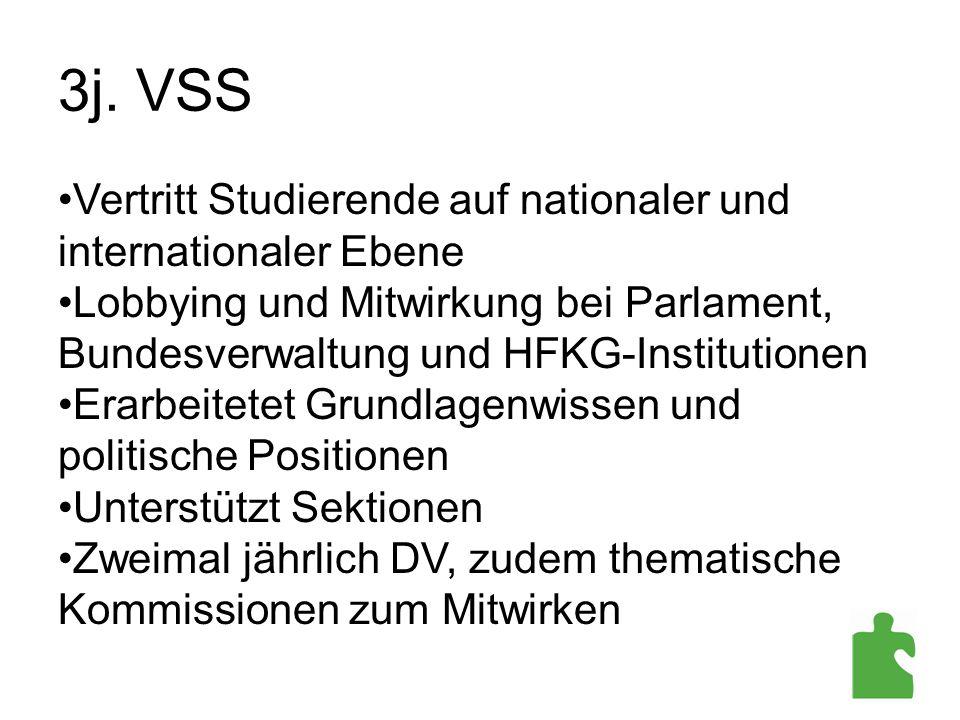 3j. VSS Vertritt Studierende auf nationaler und internationaler Ebene