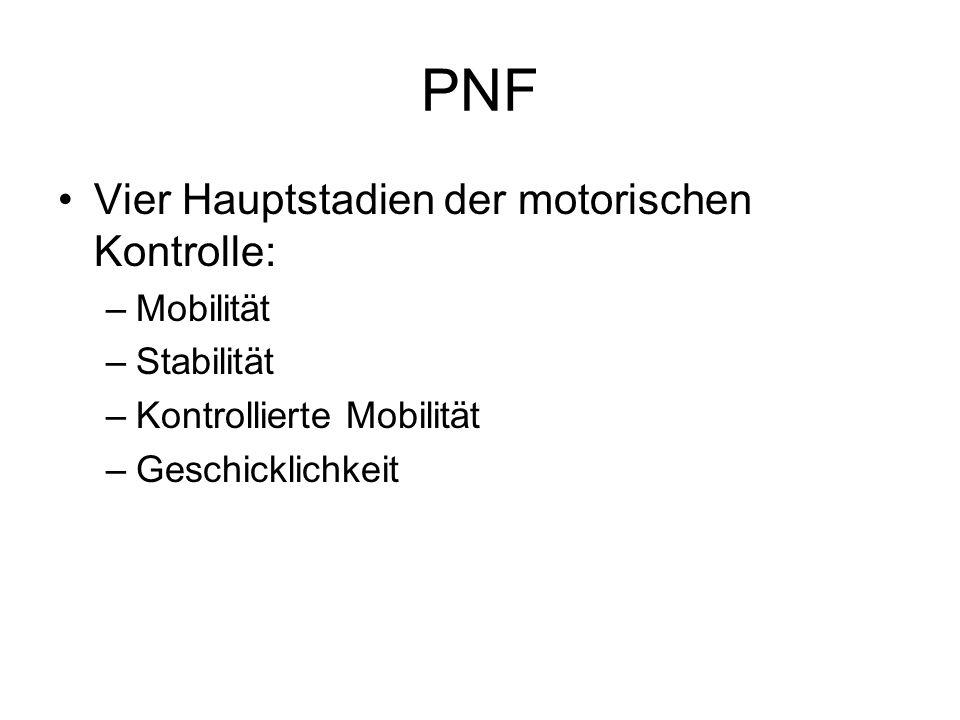 PNF Vier Hauptstadien der motorischen Kontrolle: Mobilität Stabilität