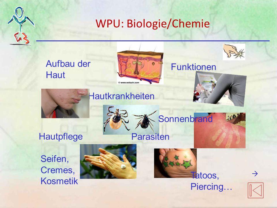 WPU: Biologie/Chemie Aufbau der Haut Funktionen Hautkrankheiten