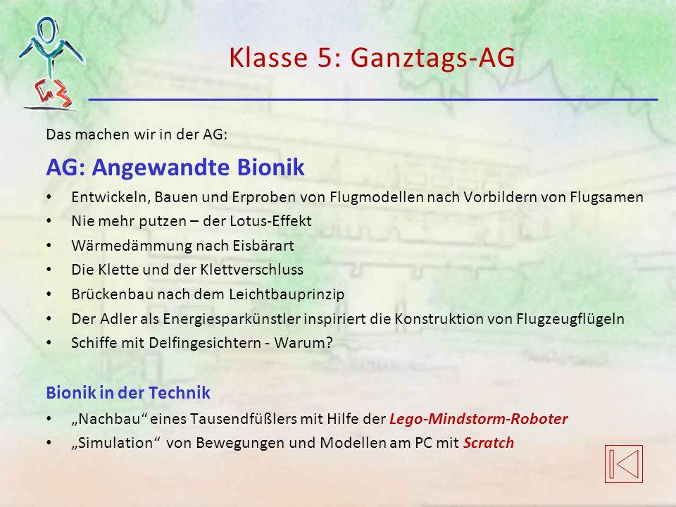 Klasse 5: Ganztags-AG AG: Angewandte Bionik Bionik in der Technik