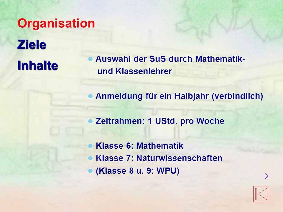 Organisation Ziele Inhalte Auswahl der SuS durch Mathematik-