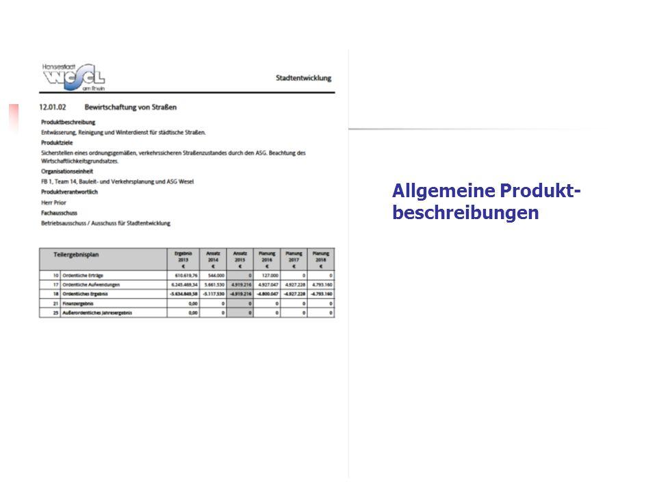 Allgemeine Produkt- beschreibungen