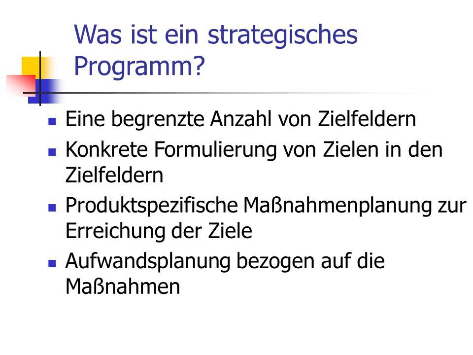 Was ist ein strategisches Programm