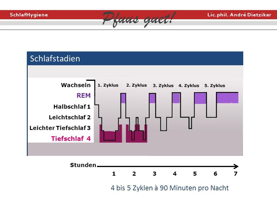 Schlafstadien 4 bis 5 Zyklen à 90 Minuten pro Nacht REM Tiefschlaf 4
