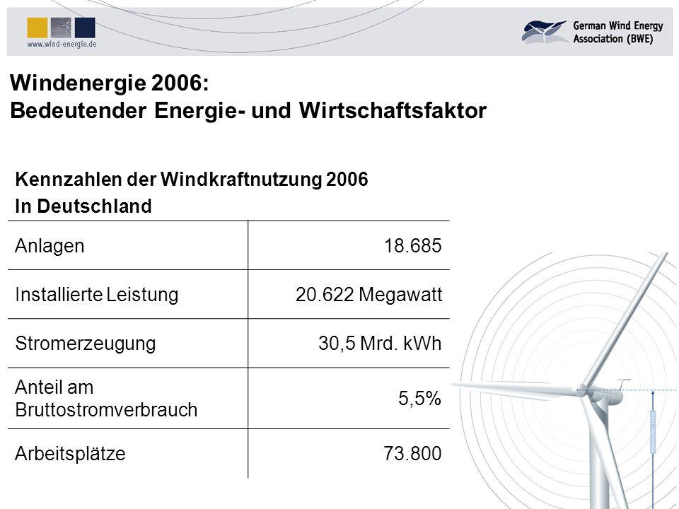 Windenergie 2006: Bedeutender Energie- und Wirtschaftsfaktor