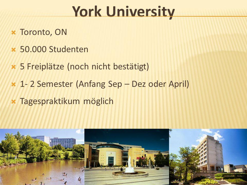 York University Toronto, ON 50.000 Studenten