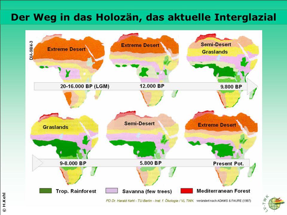 Der Weg in das Holozän, das aktuelle Interglazial