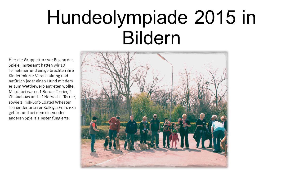 Hundeolympiade 2015 in Bildern