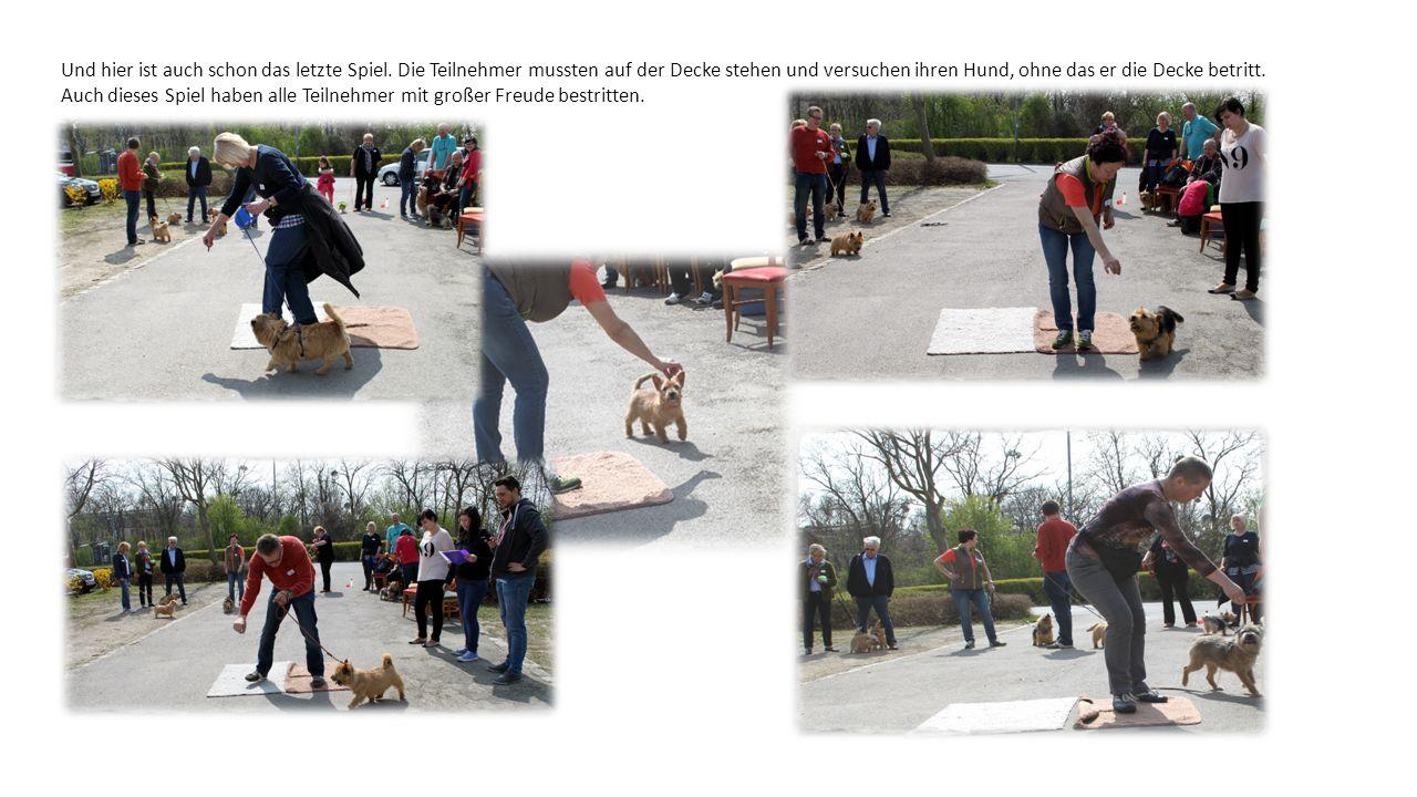 Hundeolympiade (132) Hundeolympiade (120) Hundeolympiade (137)