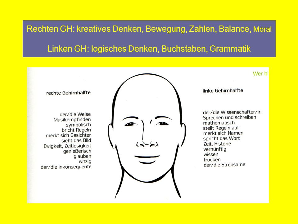 Rechten GH: kreatives Denken, Bewegung, Zahlen, Balance, Moral Linken GH: logisches Denken, Buchstaben, Grammatik