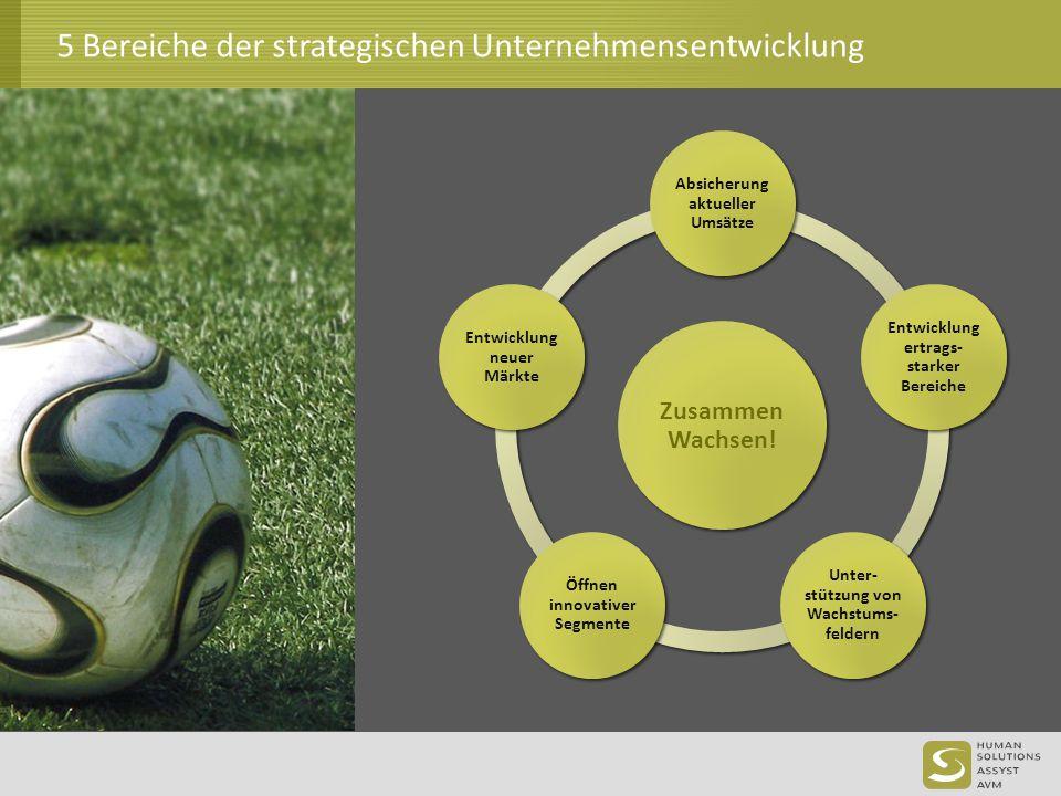 5 Bereiche der strategischen Unternehmensentwicklung