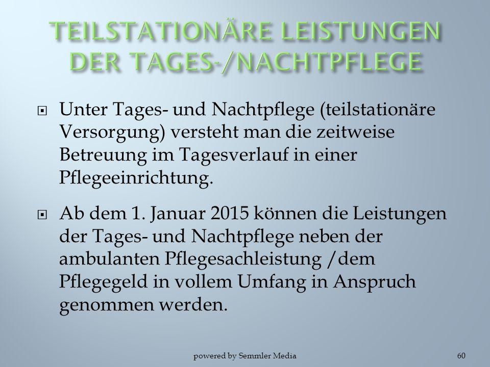 TEILSTATIONÄRE LEISTUNGEN DER TAGES-/NACHTPFLEGE