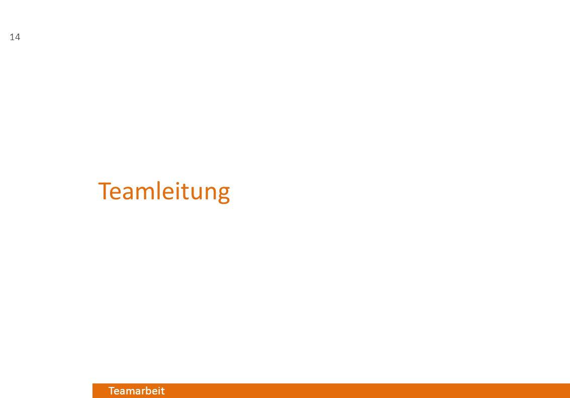 Teamleitung