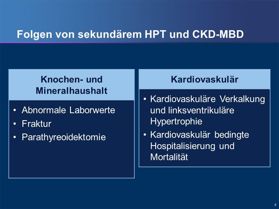 Folgen der CKD-MBD für den Knochen- und Mineralhaushalt