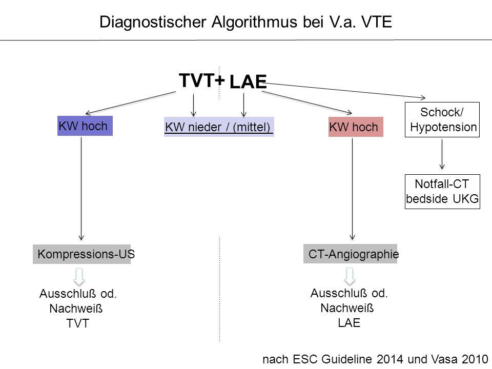 Diagnostischer Algorithmus bei V.a. VTE