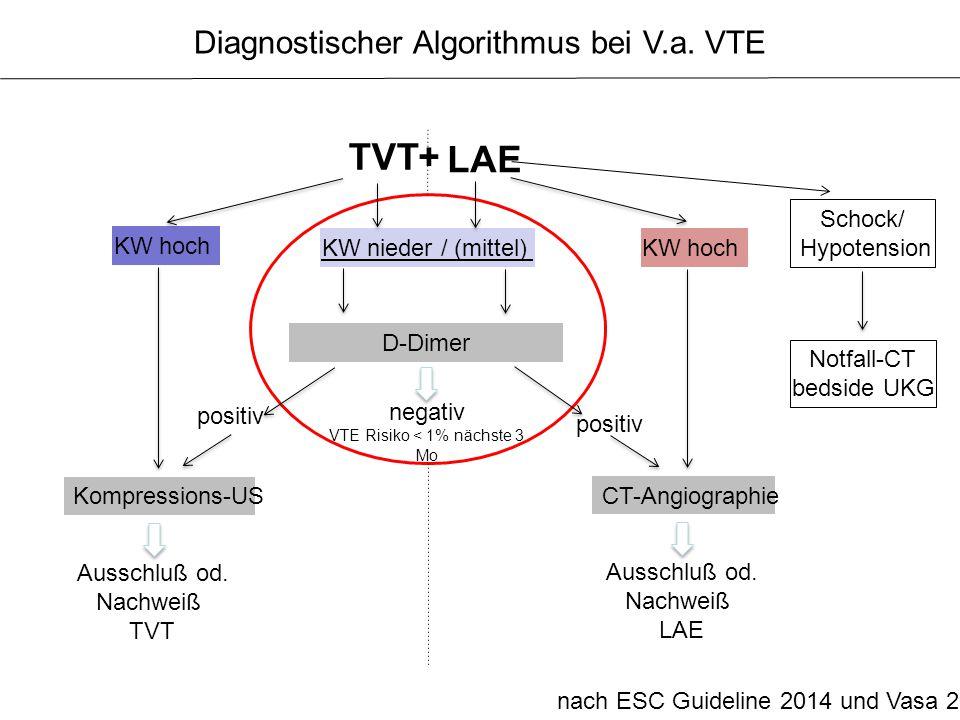 TVT + LAE Diagnostischer Algorithmus bei V.a. VTE Schock/ Hypotension