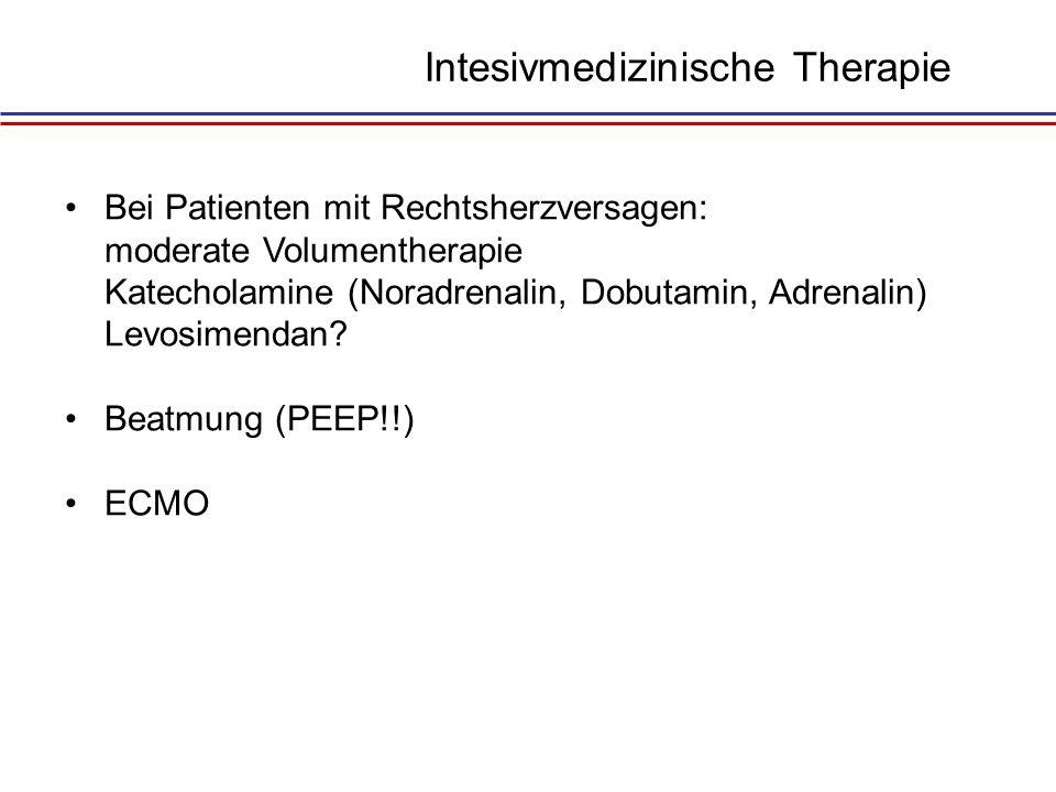 Intesivmedizinische Therapie