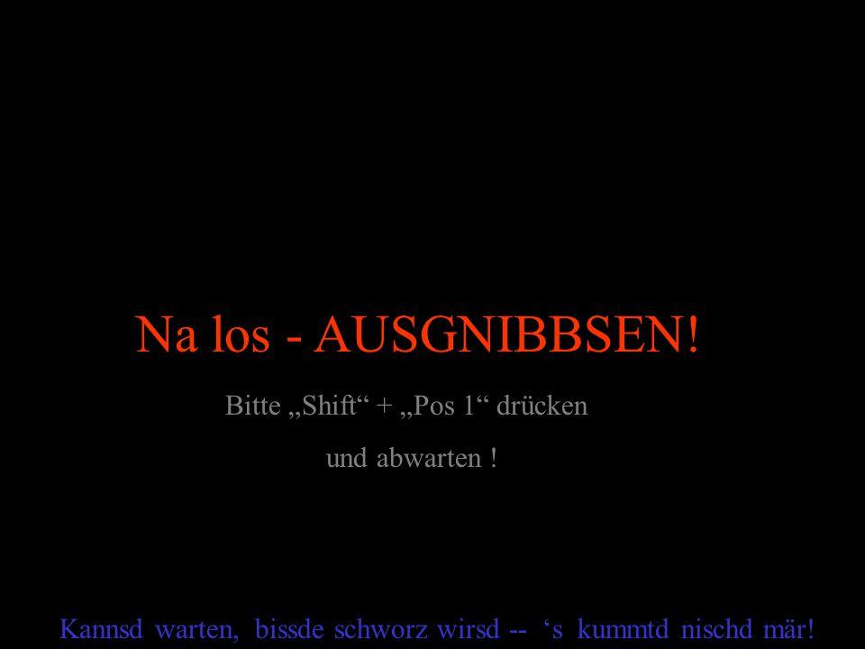 """Na los - AUSGNIBBSEN! Bitte """"Shift + """"Pos 1 drücken und abwarten !"""