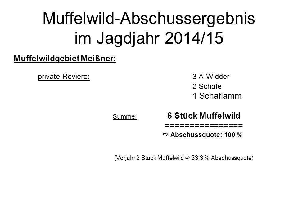 Muffelwild-Abschussergebnis im Jagdjahr 2014/15