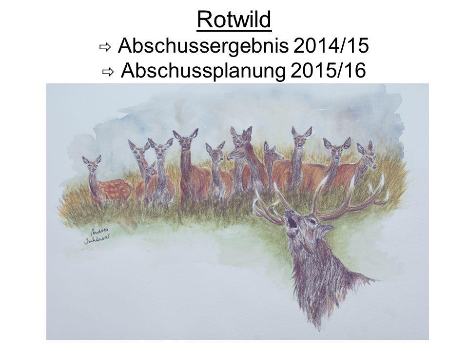 Rotwild  Abschussergebnis 2014/15  Abschussplanung 2015/16