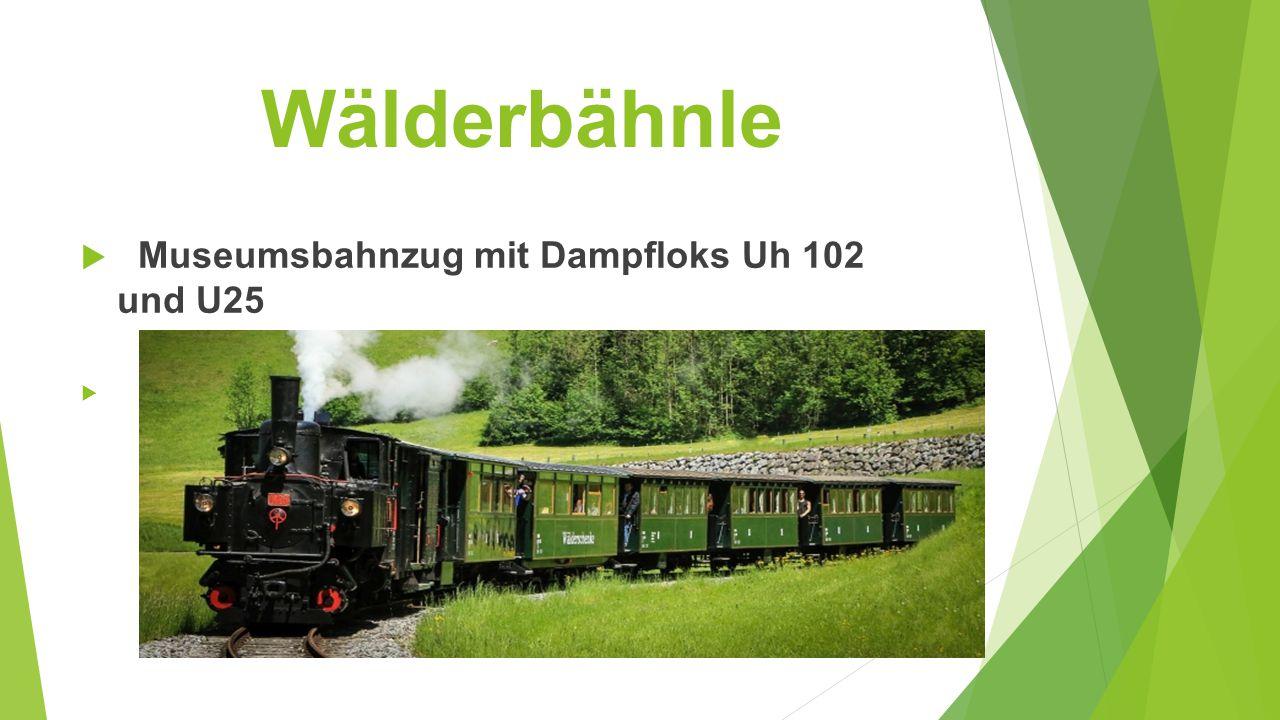 Wälderbähnle Museumsbahnzug mit Dampfloks Uh 102 und U25
