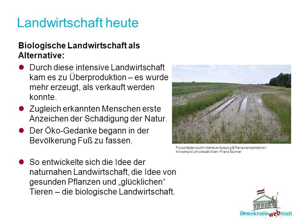 Landwirtschaft heute Biologische Landwirtschaft als Alternative: