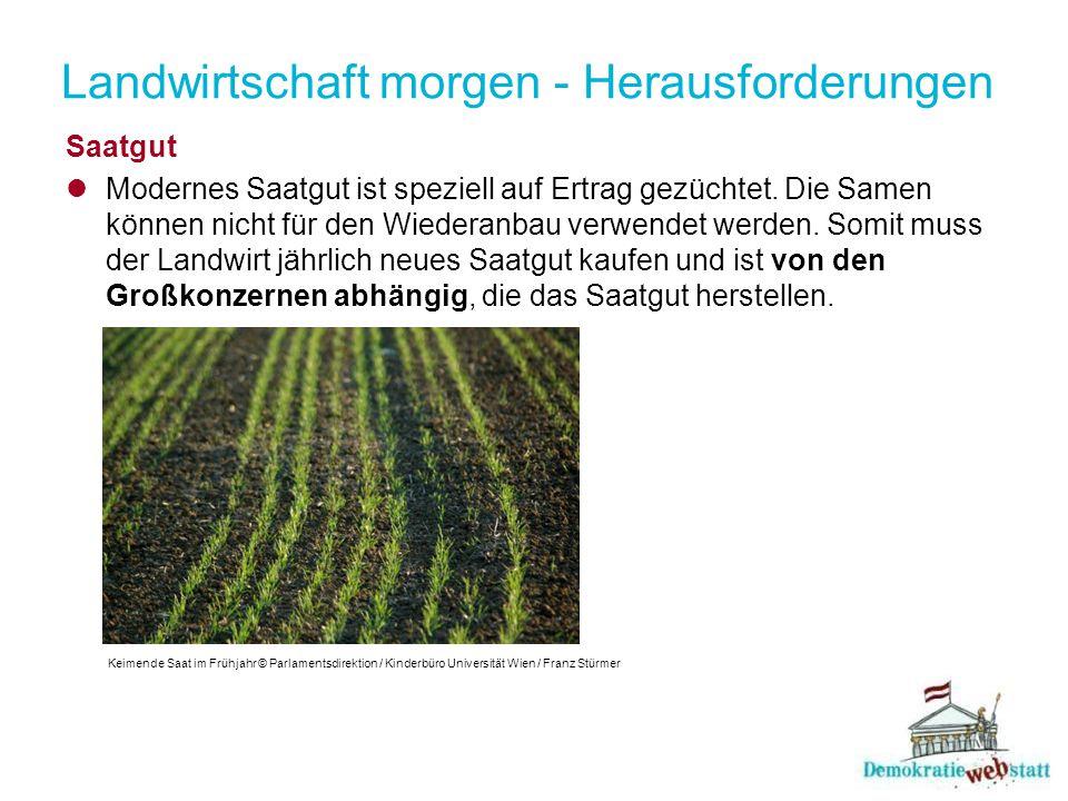 Landwirtschaft morgen - Herausforderungen